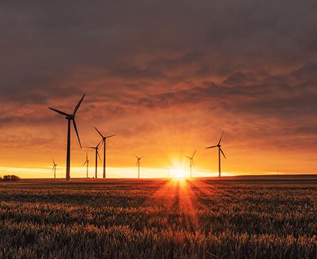 TEM_Windfarm